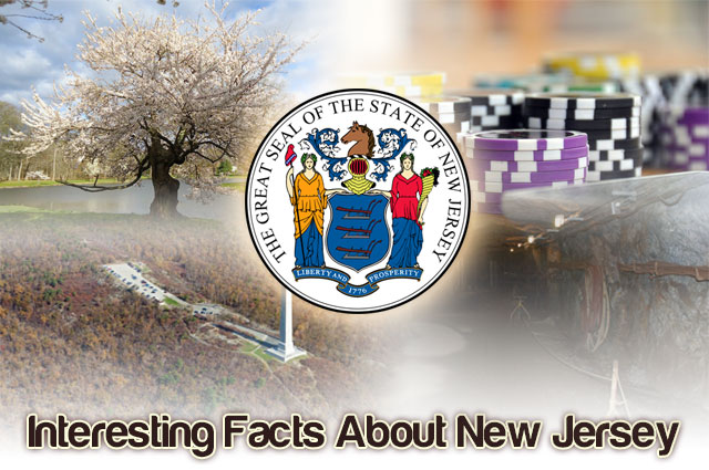 Photo of Interesting Facts About New Jersey