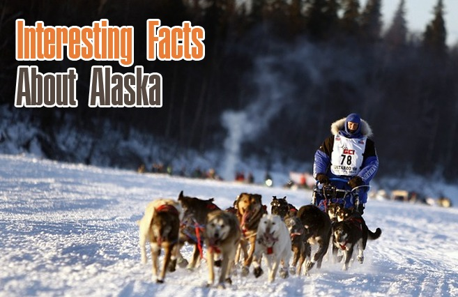 Photo of Interesting Facts About Alaska